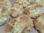 biscuit_0003