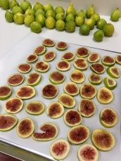Figs for Freezing