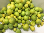 Washed Figs